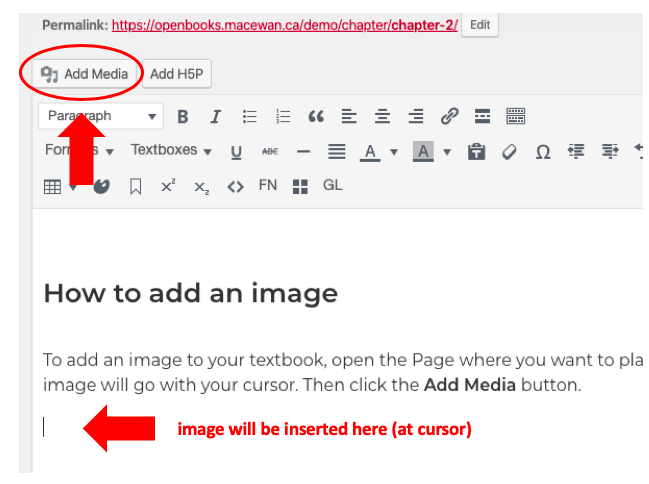 Screenshot directing to place cursor and then select Add Media to add an image